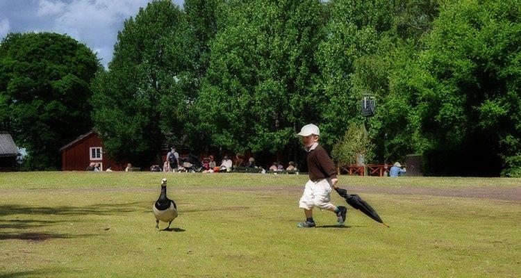 Niño juega en los parques de Skansen, Estocolmo.