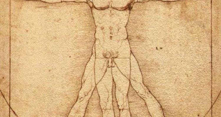 El hombre vitruvio de Leonardo Da Vinci.