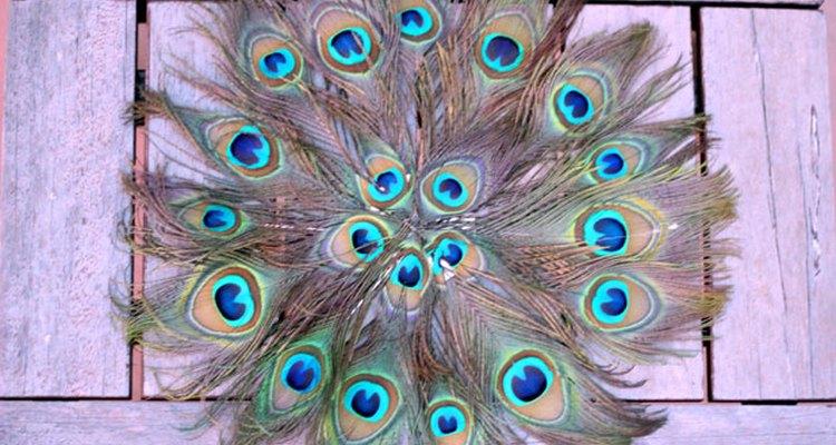 Salvamanteles de plumas de pavo real.