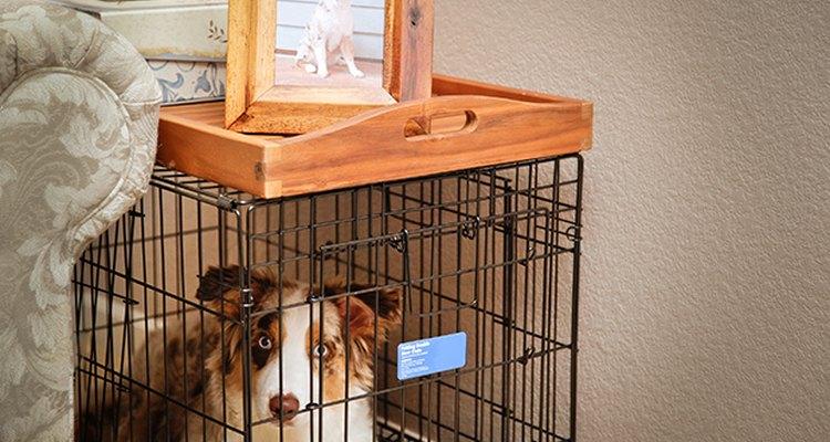 La jaula del perro no tiene que ser desagradable a la vista cuando funciona como una práctica mesa auxiliar.