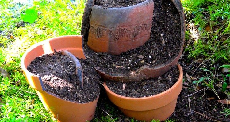 Añade tierra para macetas.