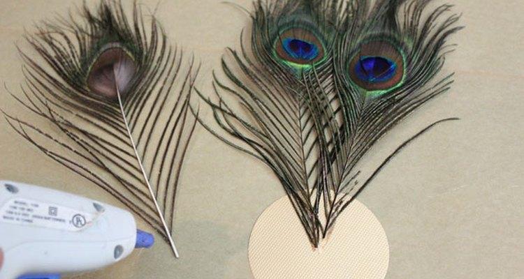 Adhiere las plumas al disco de cartón.