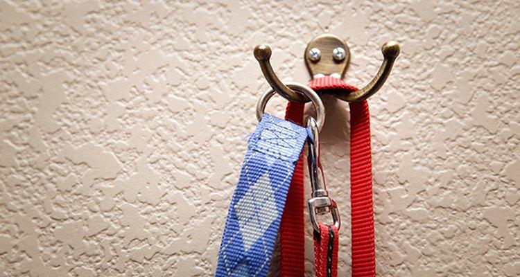 Cuelga las correas de tu cachorro junto a la puerta, para siempre estén a mano cuando deseas salir.