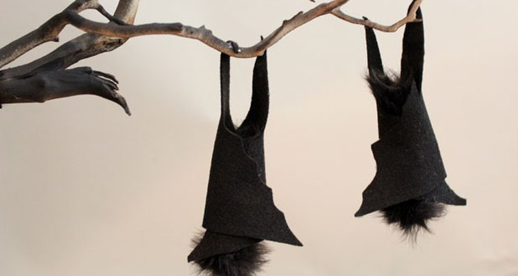 Adhiere los murciélagos a la rama.
