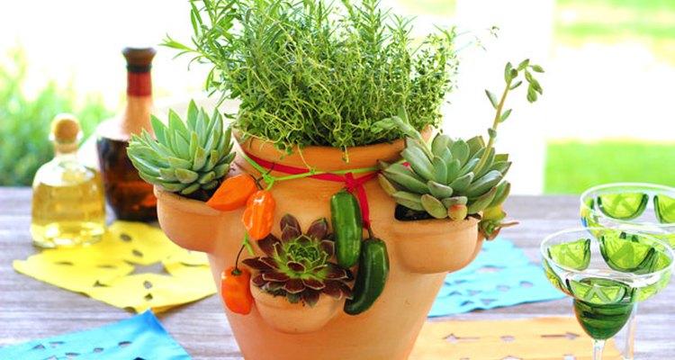 Un centro de mesa hecho con un jardín de hierbas y de suculentas.