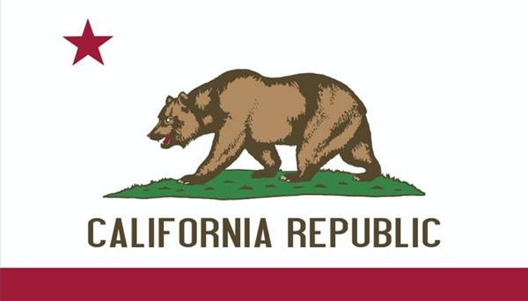 a Form FL100, a California Uncontested Divorce
