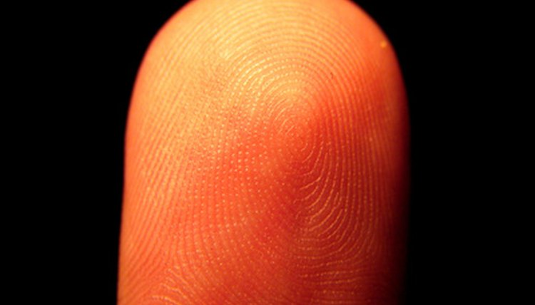 No two fingerprints are alike, but they can be grouped into types.