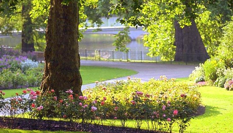 Beautifully designed park