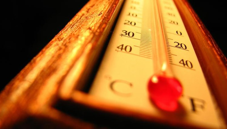 Allow children to handle and look at a real thermometer.