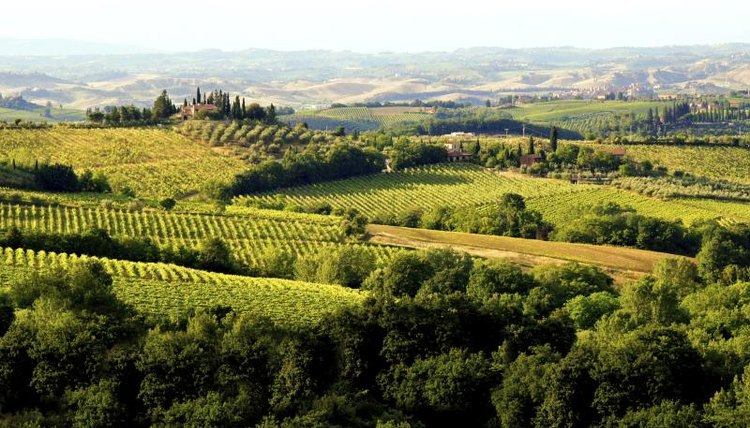 Wide shot of the Tuscan countryside