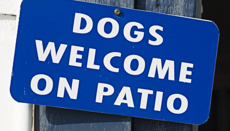 """Dogs Welcome, Patio"""