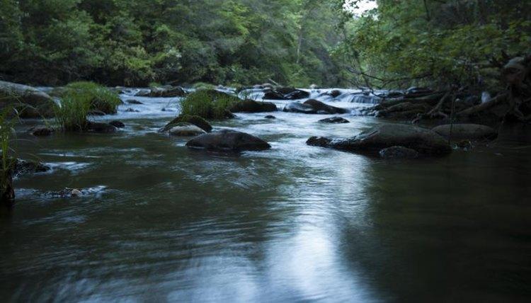 River running through Georgia.
