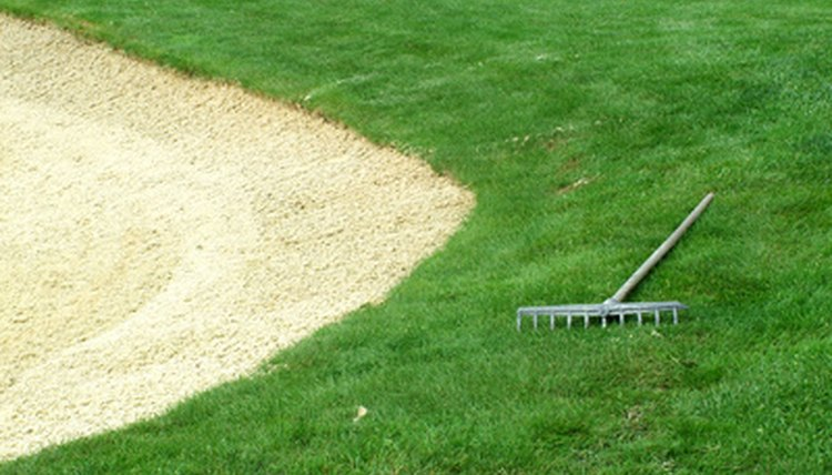Courses provide rakes for bunker maintenance.