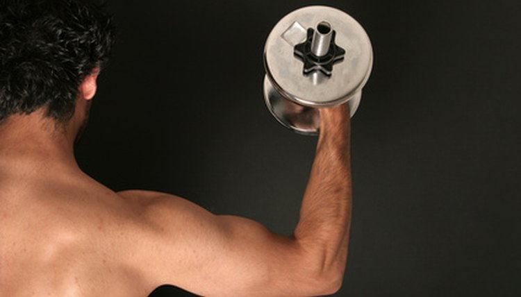 Triceps can be excercised with dips.