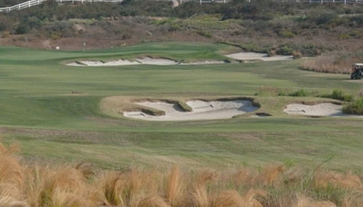 Of the five major components on a golf course, sand and water are least friendy.