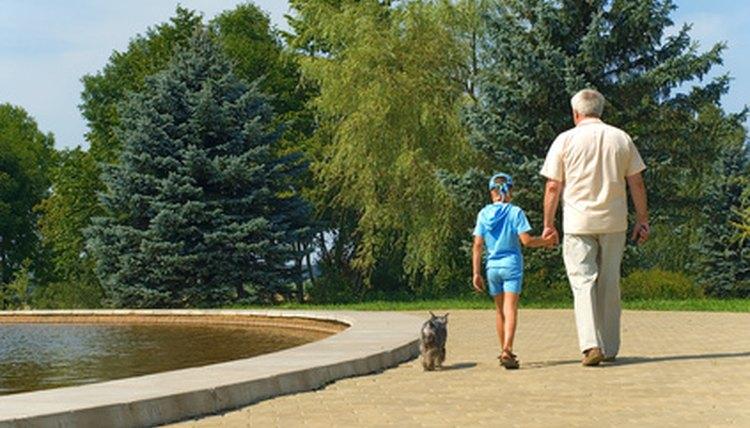 Grandparents, custody, their grandchildren