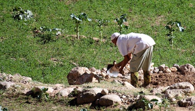 Types Of Farm Work