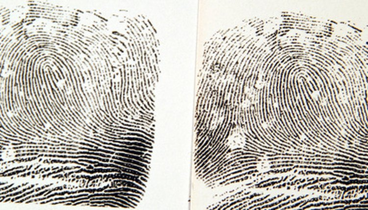 How To Become A Latent Fingerprint Examiner