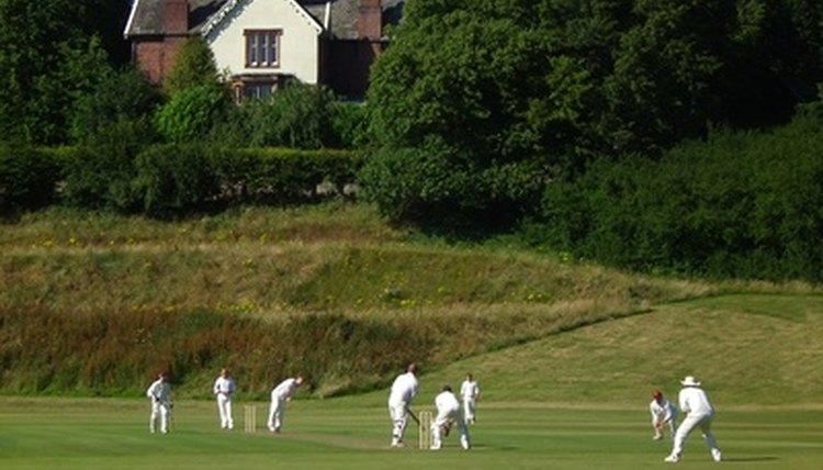 Basic Skills & Techniques for Cricket