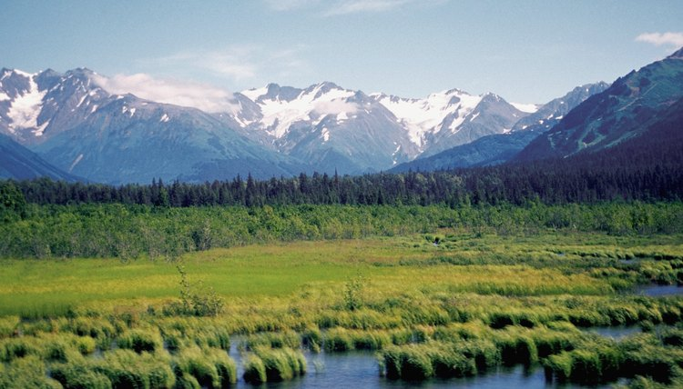 Snow covered mountains and a stream along Alaska highway, Alaska, USA