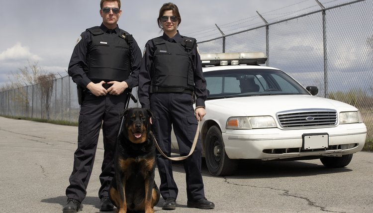 A modified BDU is typically worn by police K-9 officers.