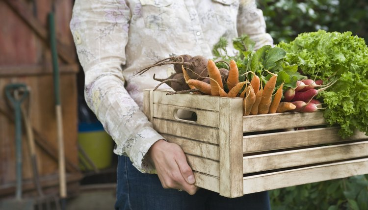 Man carrying crate of vegetables mid section
