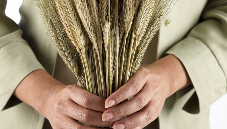 Talk about wheat and tares to teach Biblical principles.