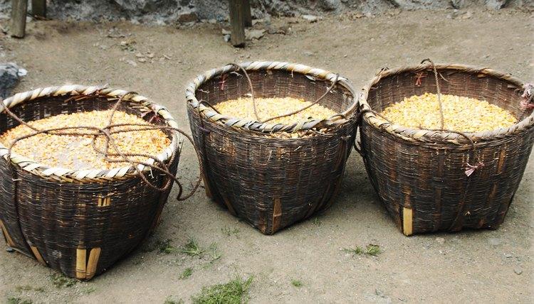 Baskets of corn