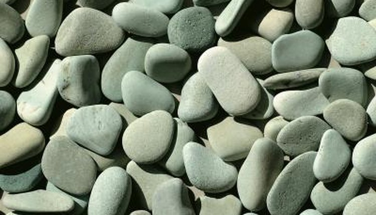 How Much Gravel and Rocks Should I Put in My Turtle Tank
