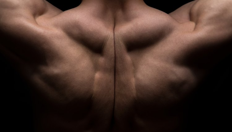 Muscles Involved in Barbell Shrugs