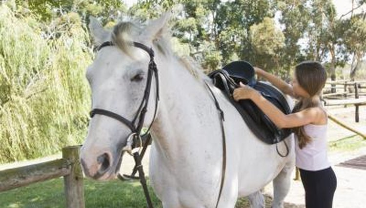 How to Tack Up a Horse | Animals - mom me