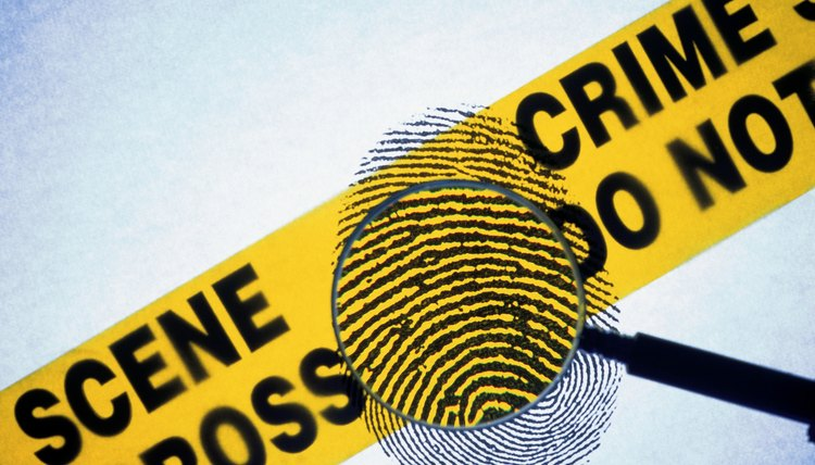Students in Florida can learn the basics of crime scene investigation by pursuing a degree in forensic science.