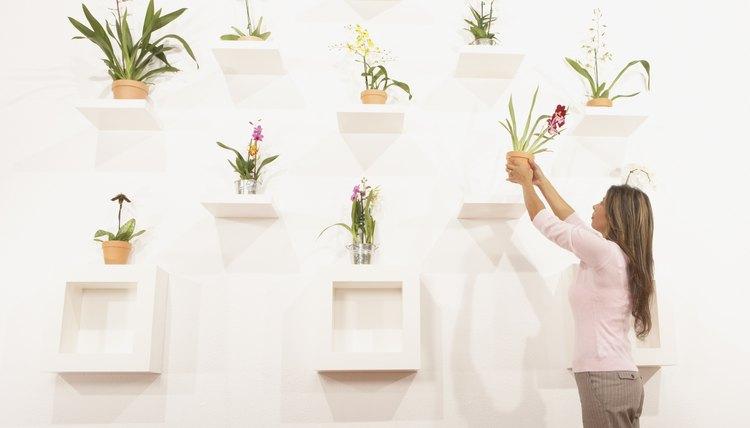 Creative wall display