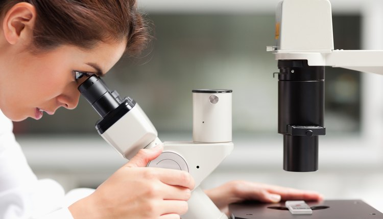 Close up of a female science student looking in a microscope