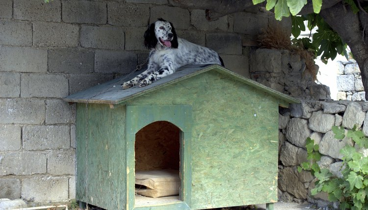 how to keep a dog house cool in summer animals mom me rh animals mom me cool dog houses in minecraft cool dog houses for sale