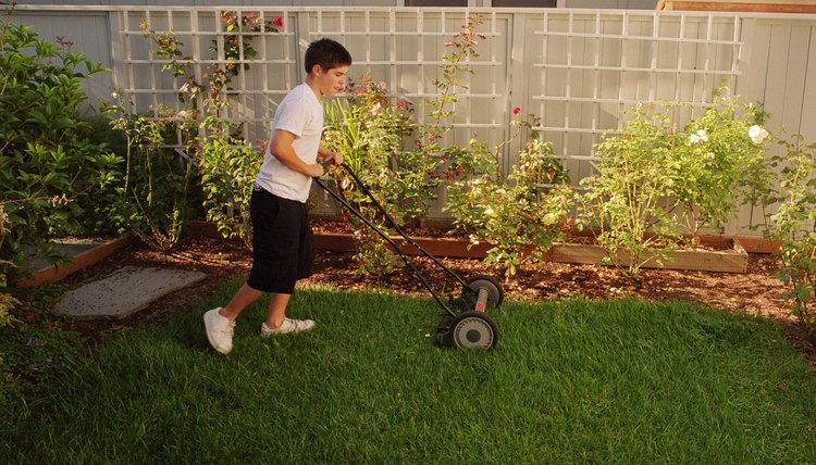 Adolescent Boy Mowing the Lawn