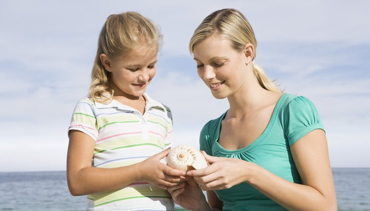 Incorporate activities that allow students to physically examine different kinds of shells.