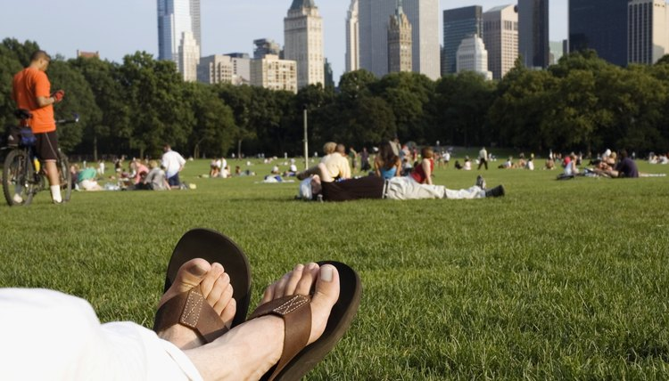 A city government may develop and maintain public parks and recreational areas.