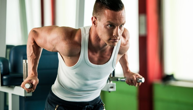 Definition of Neutralizer Muscles