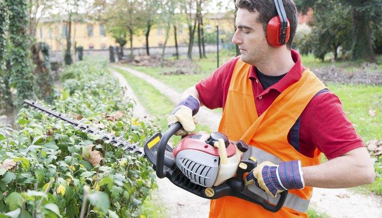 job description for a landscape laborer | career trend