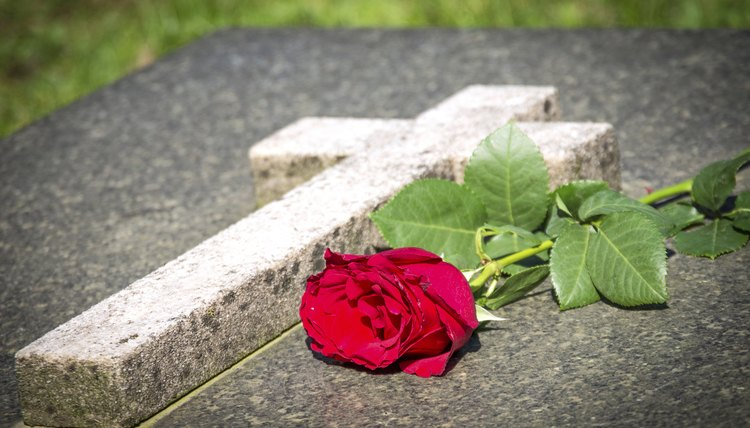 Red rose at cemetery