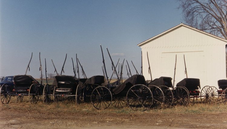 The agrarian Amish lifestyle promotes natural remedies.