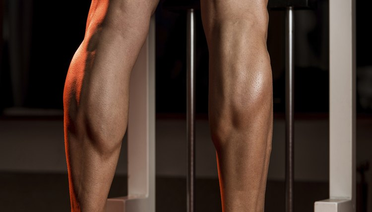 What Muscles Do Heel Raises Work?