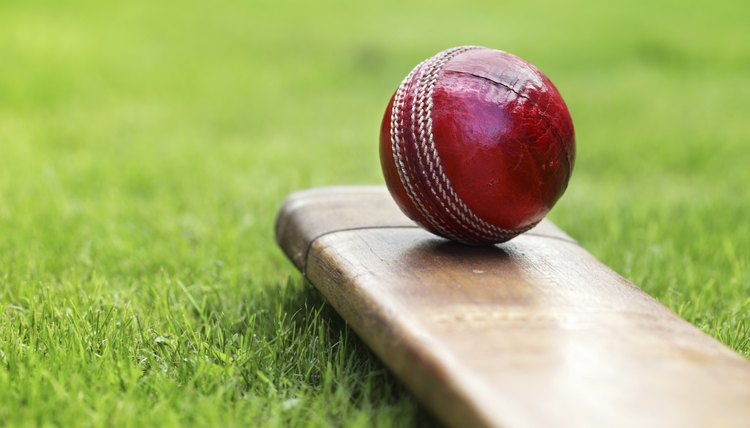 Sport of Cricket Information