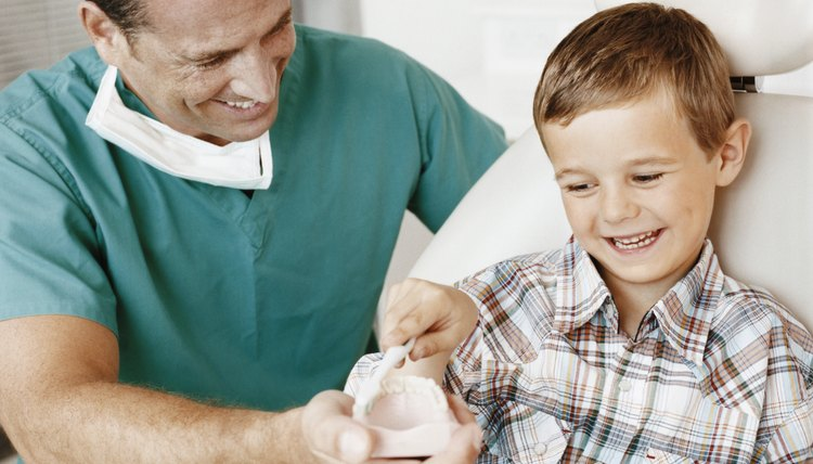 Dentist Showing a Young Boy How to Brush His Teeth With a Plaster Cast of Human Teeth