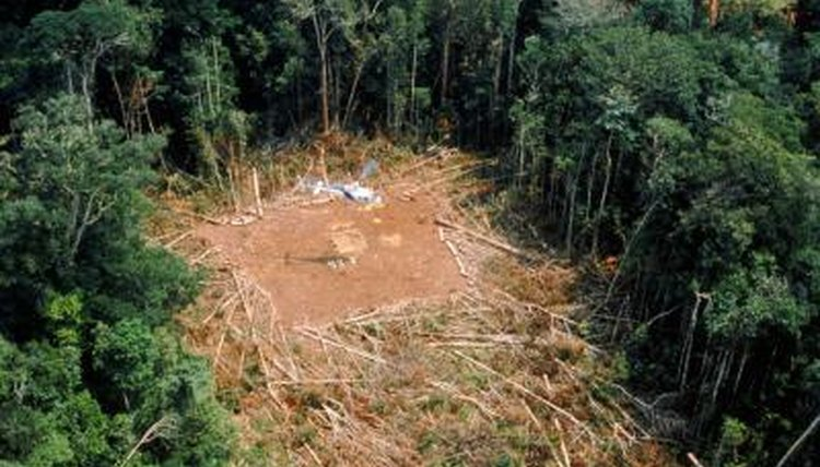 Causes Of The Depletion Of Natural Resources