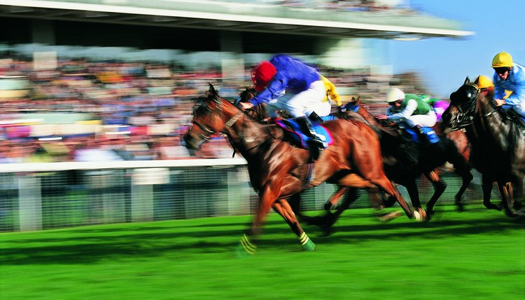 Horse racing remains a controversial sport.