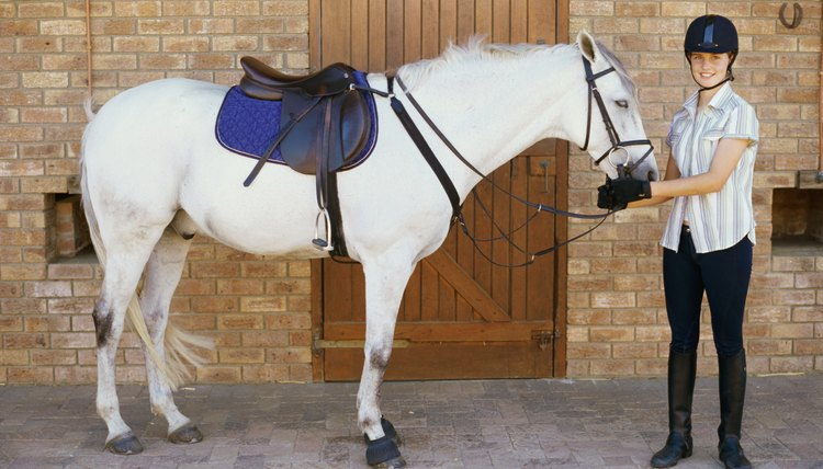 How to Measure the Tree of an English Saddle | Animals - mom me