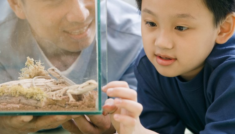 Sharing nature with preschoolers involves both math and science.