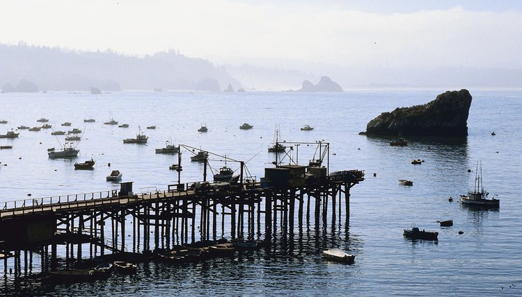 Fishing fleet in Pacific Ocean, Trinidad, California